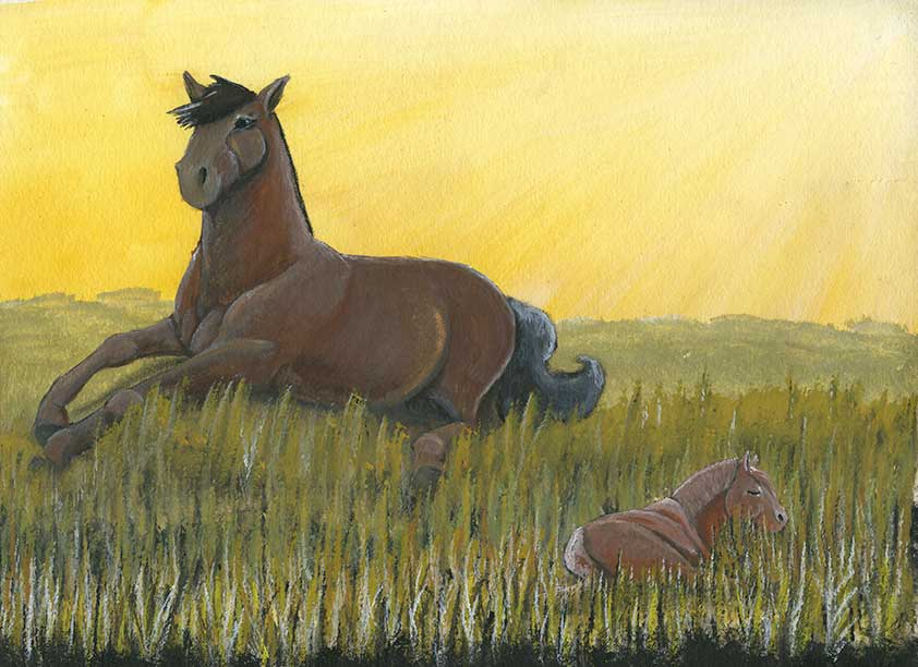 Horses sleep